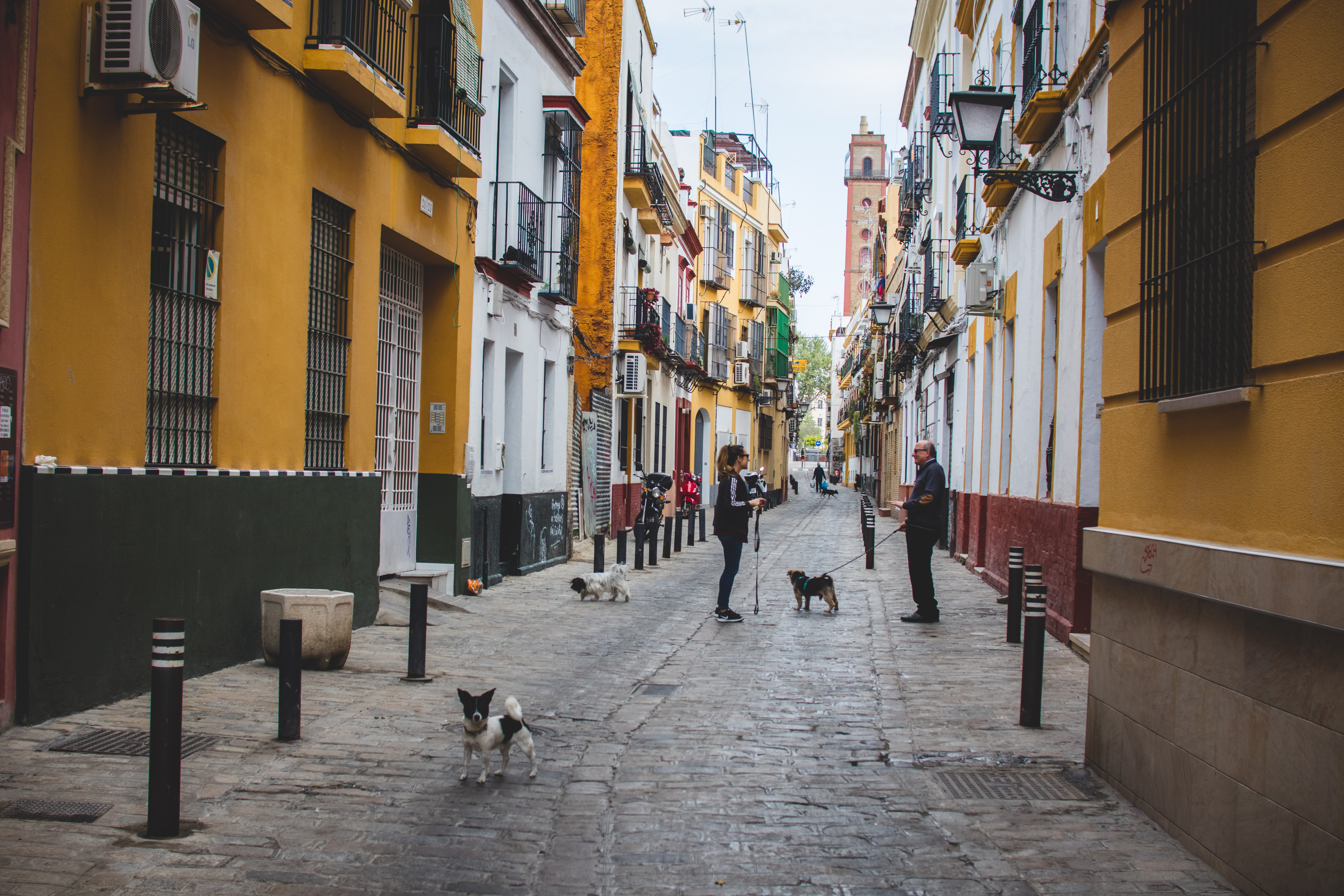 Streets of Seville 2019